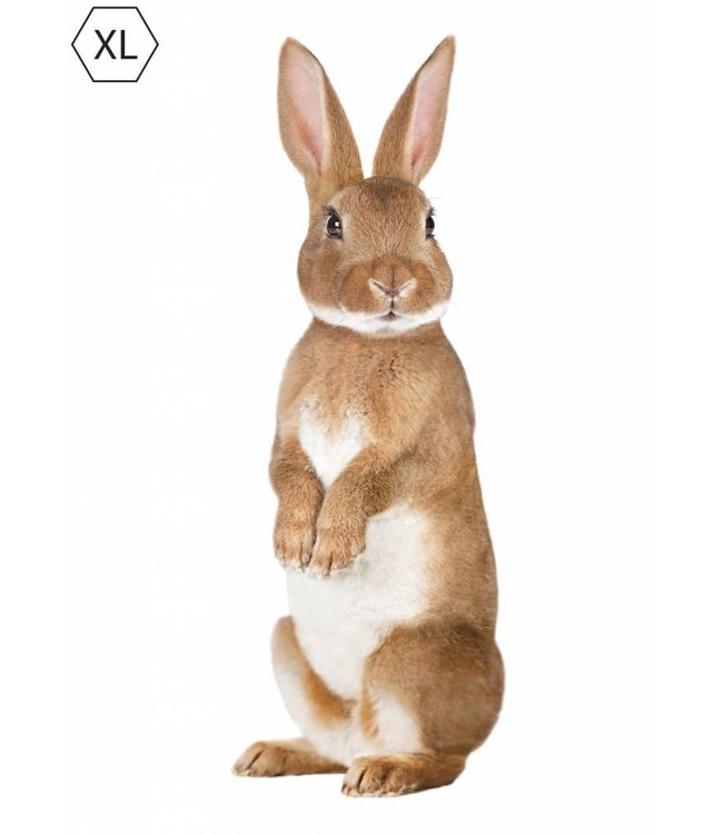 Wall sticker Rabbit XL, 43 x 118 cm