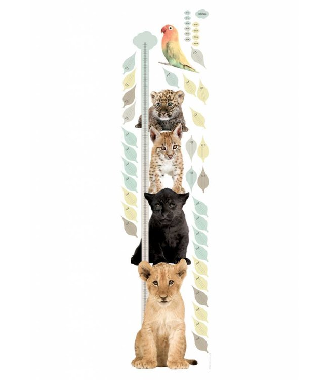 Muursticker Growth Chart 1, 40 x 150 cm