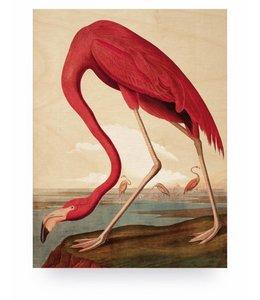Print op hout Flamingo, M