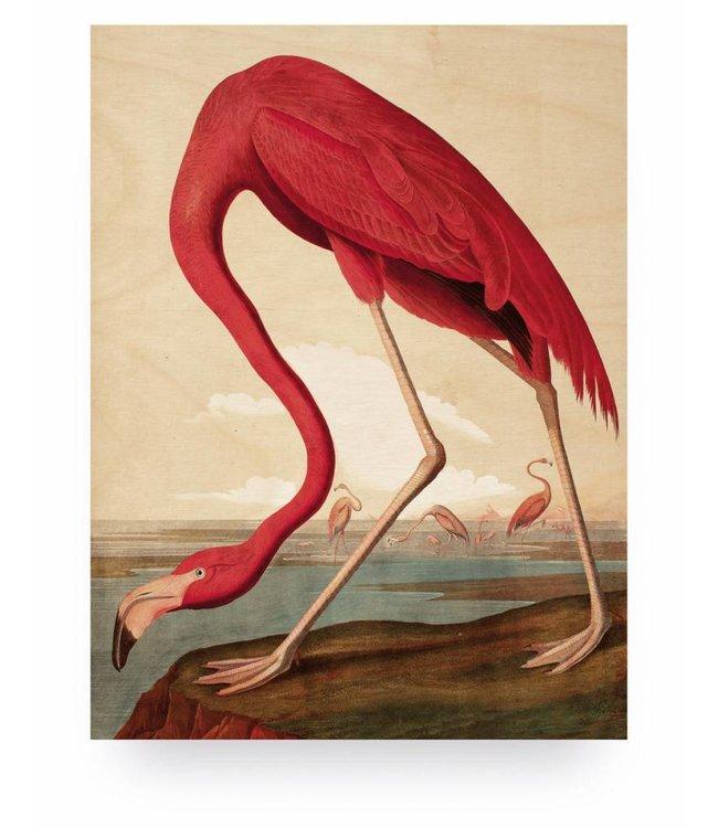 Print op hout, Flamingo, M, 60 x 80 cm