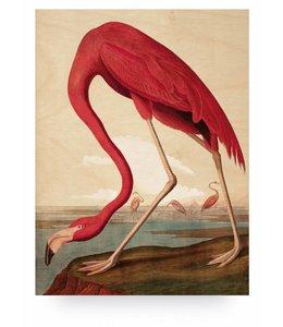 Print op hout Flamingo, L