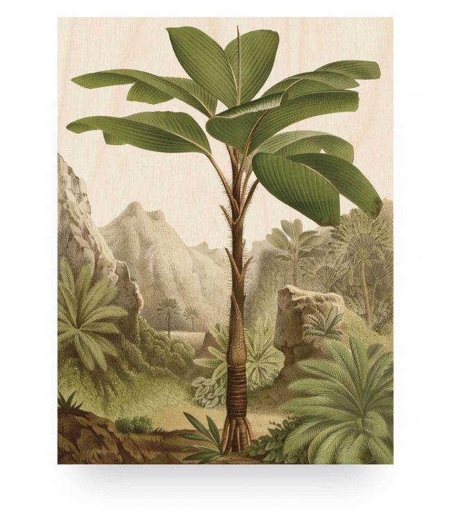 Print op hout, Banana Tree, S, 45 x 60 cm