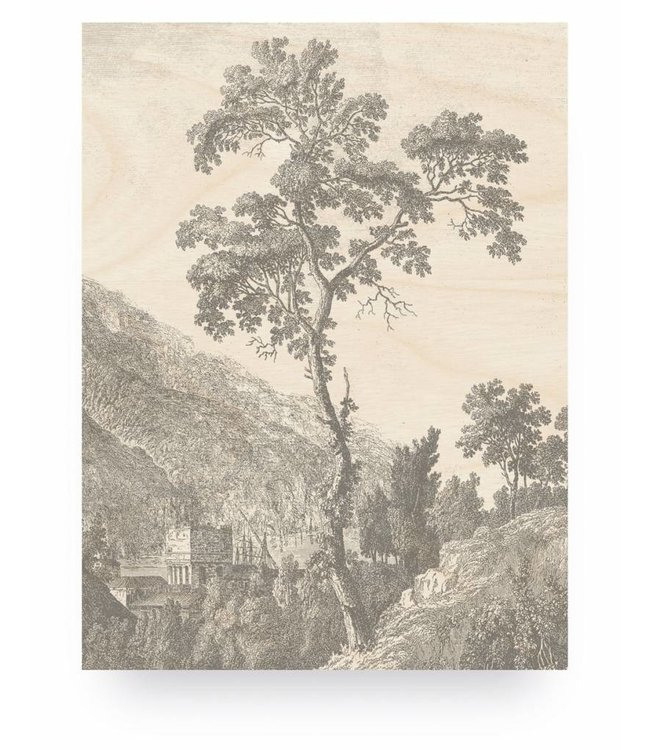 Print op hout, Engraved Tree, M, 60 x 80 cm