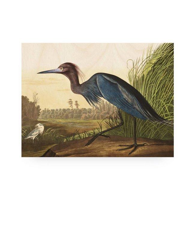 Print op hout, Blue Crane, M, 80 x 60 cm