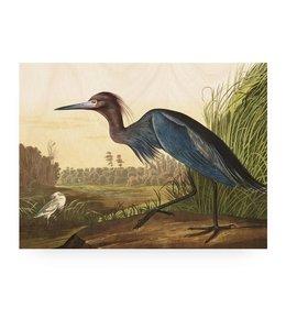 Prints auf Holz, Blue Crane, L