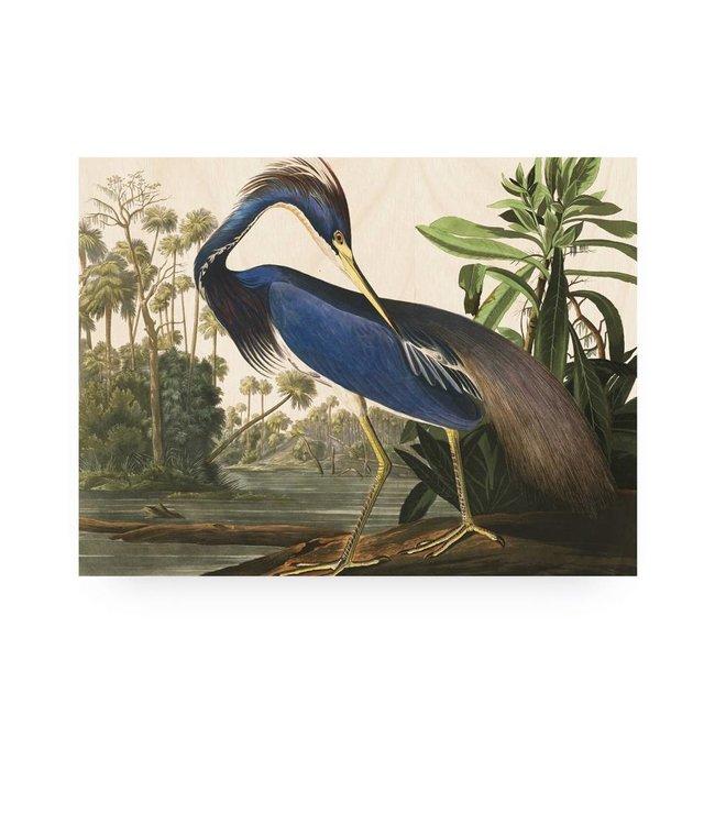 Print op hout, Louisiana Heron, M, 80 x 60 cm