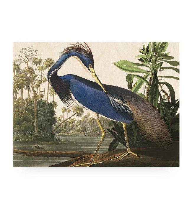 Print op hout, Louisiana Heron, L, 100 x 75 cm