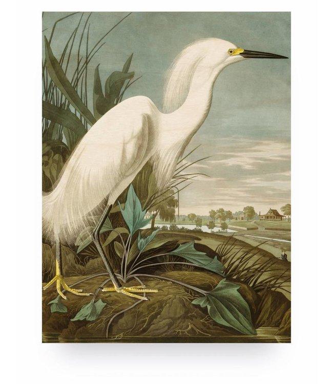 Print op hout, Snowy Heron, M, 60 x 80 cm