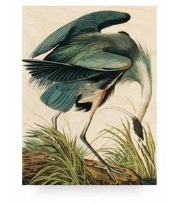 Heron in gras, L
