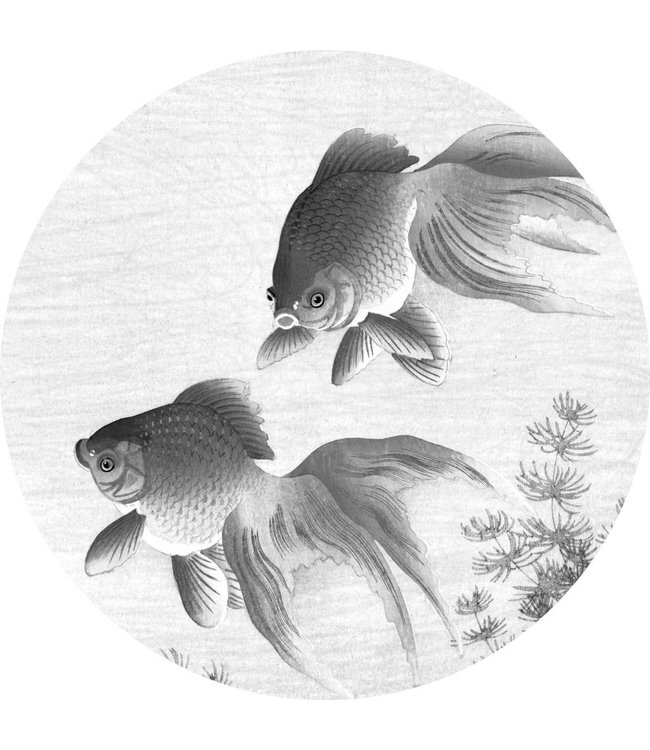 Tapetenpaneel rund Goldfish, ø 190 cm