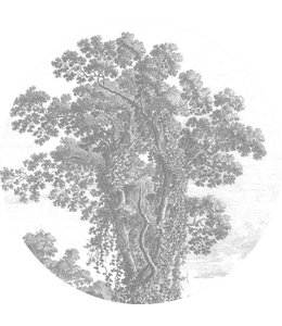 Tapetenpaneel rund Engraved Tree