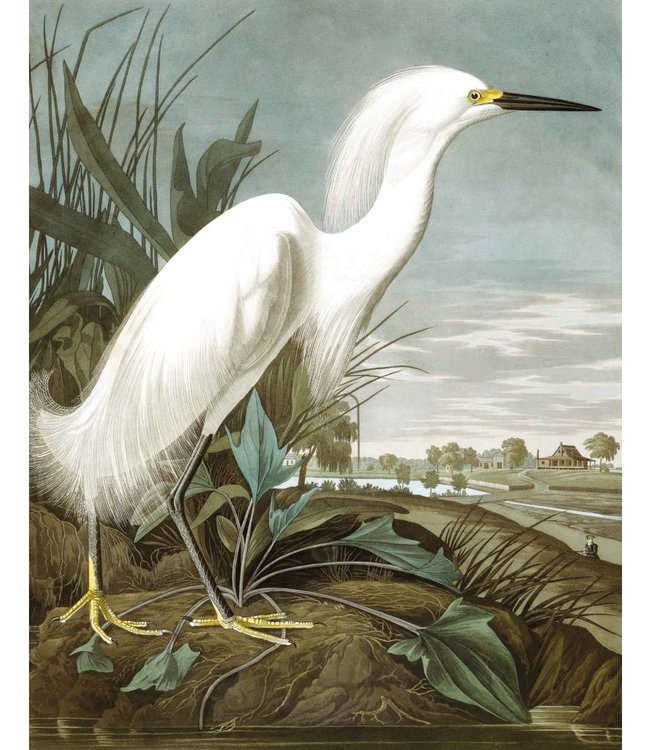 Wallpaper Panel Snowy Heron, 142.5 x 180 cm