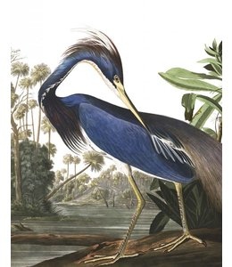 Behangpaneel Louisiana Heron