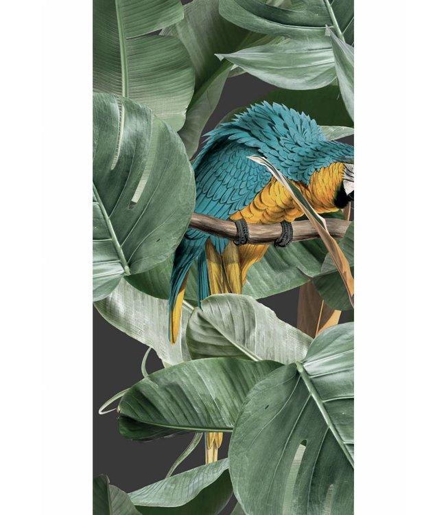 Behang Botanical Birds, Zwart, 97.4 x 280 cm