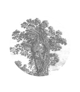 Wallpaper Circle Engraved Tree