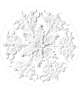 Behangcirkel Ornaments