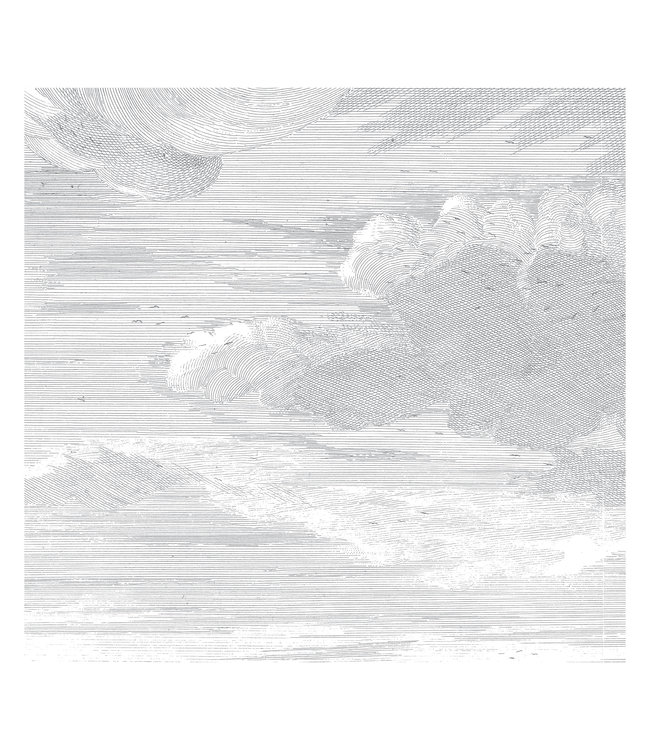 Fototapete Engraved Clouds, 292.2 x 280 cm
