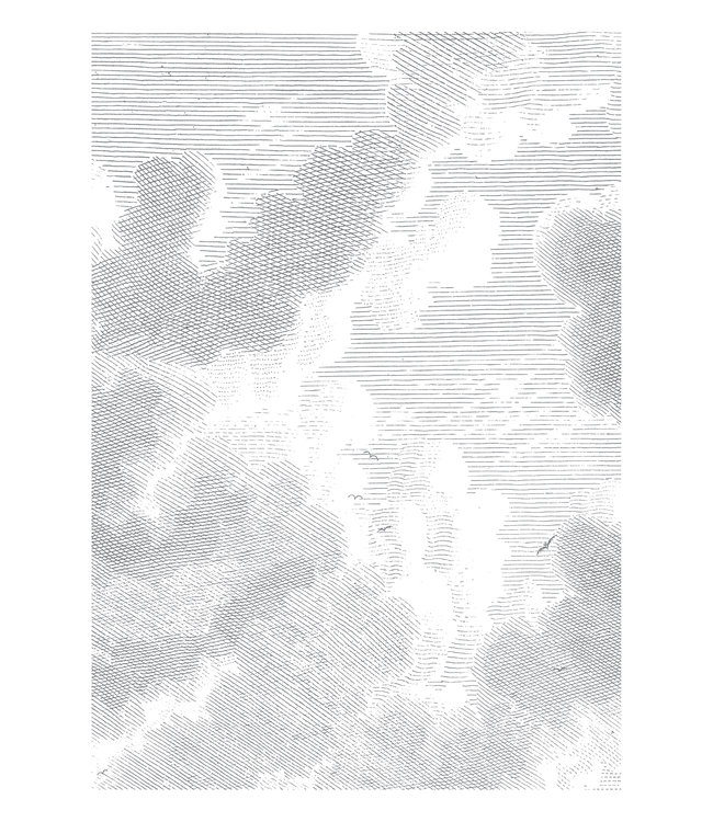 Wall Mural Engraved Clouds, 194.8 x 280 cm
