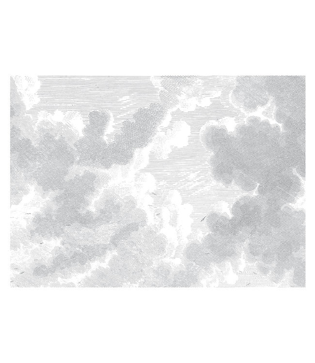 Wall Mural Engraved Clouds, 389.6 x 280 cm