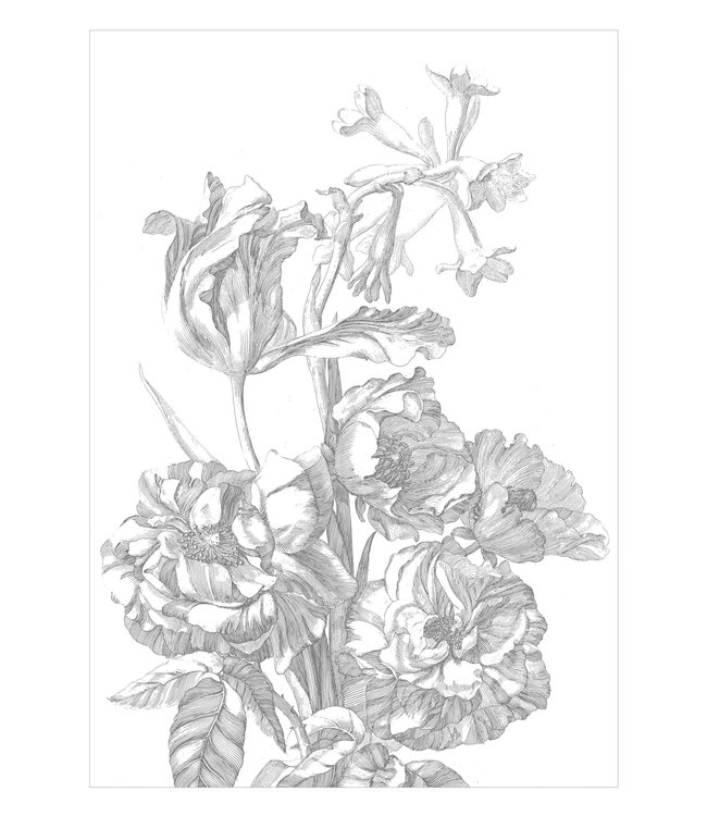 Wall Mural Engraved Flowers, 194.8 x 280 cm