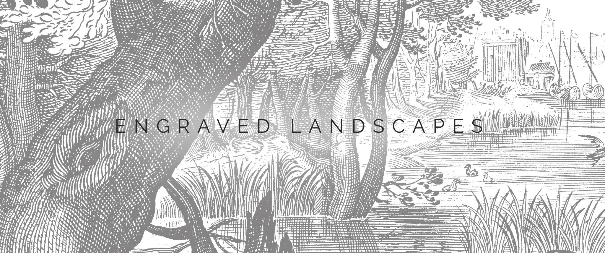 Behang Engraved Landscapes