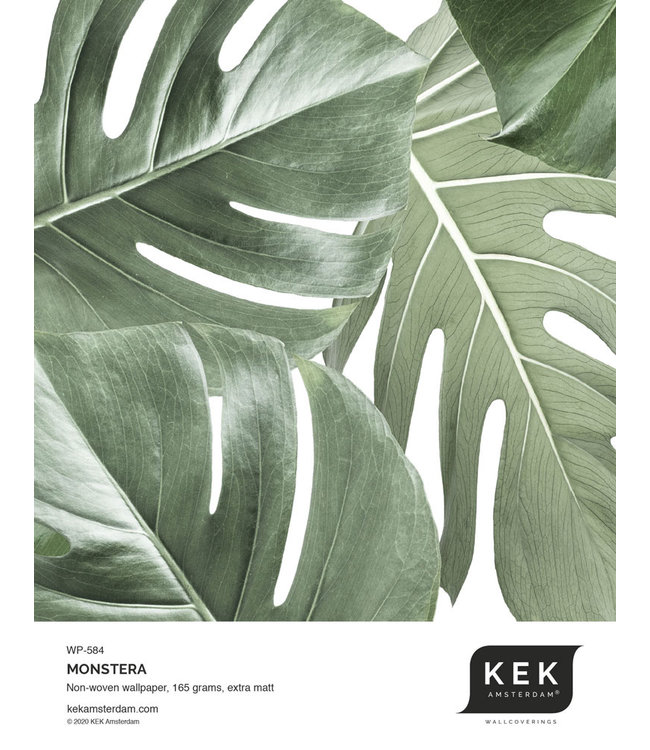 Behangstaal Monstera WP-584