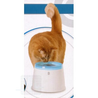 Cat it drinkfontein