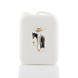 Rapide Shampoo 5L