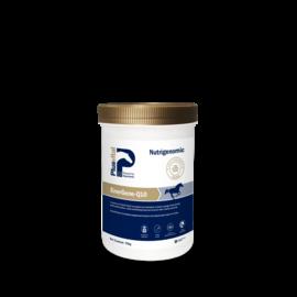 PlusVital Plusvital EnerGene-Q10 750g
