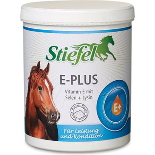 Stiefel E-Plus Powder