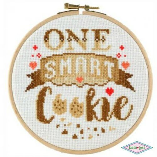 DMC Stitchonomy One Smart Cookie