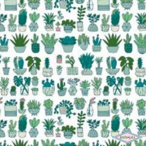 Katoen Cactussen