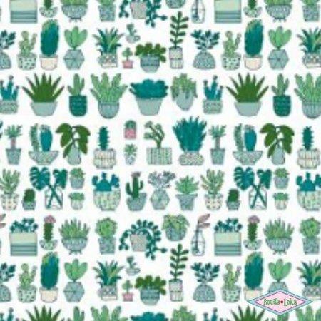Rico Katoen Cactussen