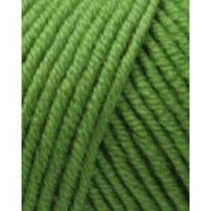Lang Yarns Merino 120 316 groen