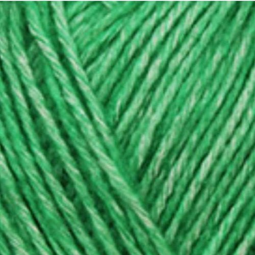 Yarn and Color Yarn and Colors Charming 086 Peony Leaf