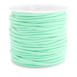 Gekleurde elastiek 2,5mm light turquoise green 0.5m