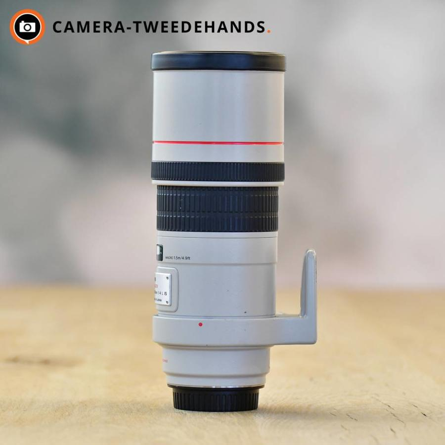 Canon 300mm 4.0 L EF IS F4 USM