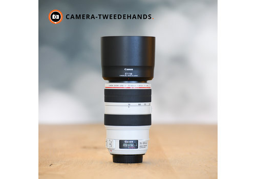 Canon 70-300mm 4-5.6 L EF IS USM