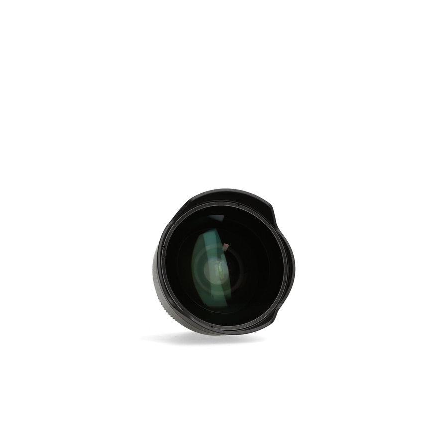 Sony fisheye converter