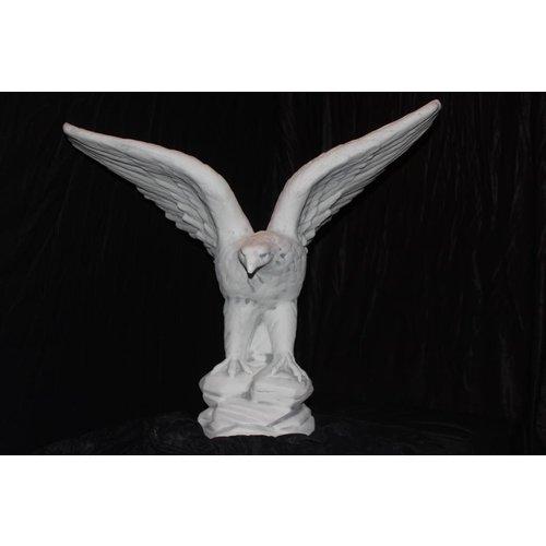Adelaar met uitslaande vleugels