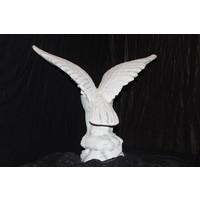 thumb-Adelaar of Arend met uitslaande vleugels-5