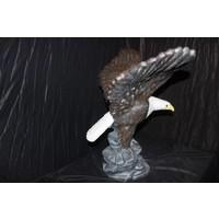 thumb-Adelaar of Arend met uitslaande vleugels-2