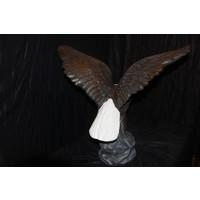 thumb-Adelaar of Arend met uitslaande vleugels-8