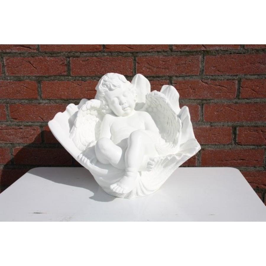 cherubijn engel in bloemkelk-2