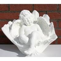 thumb-cherubijn engel in bloemkelk-1