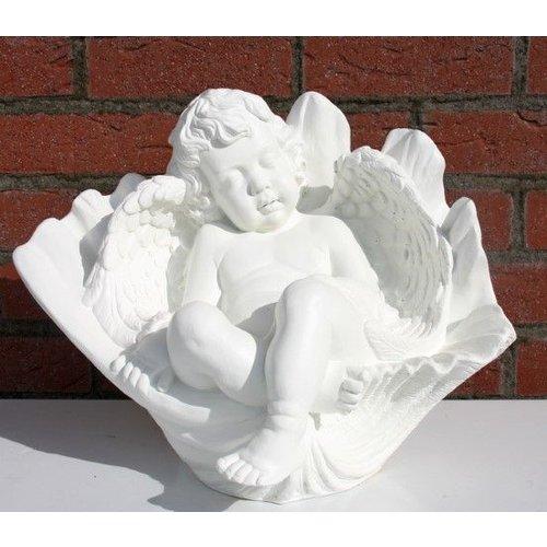 cherubijn engel in bloemkelk