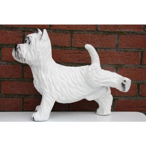 Hond (Terriër)