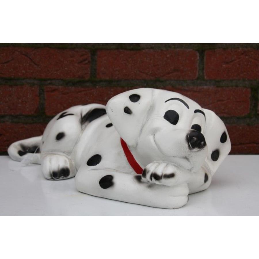 Dalmatiër spikkel hond-1