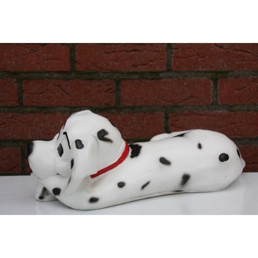 Dalmatiër spikkel hond-3
