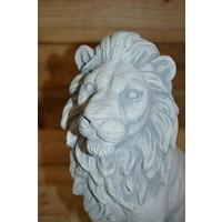 thumb-Leeuw  zittend-4